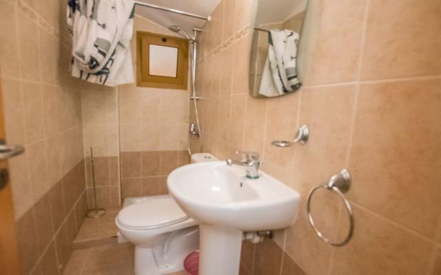 Guest wc with shower