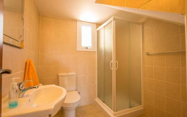 Downstairs shower with toilet