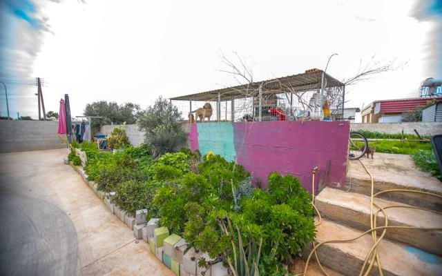 Garden in Sotira property for sale